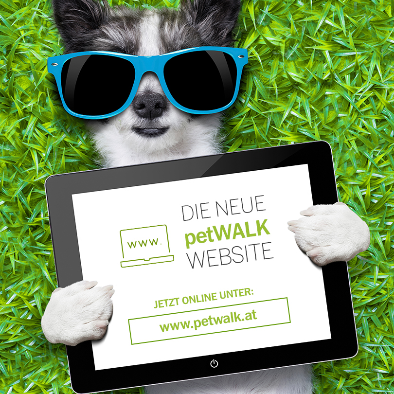 Die neue petWALK Website ist online!