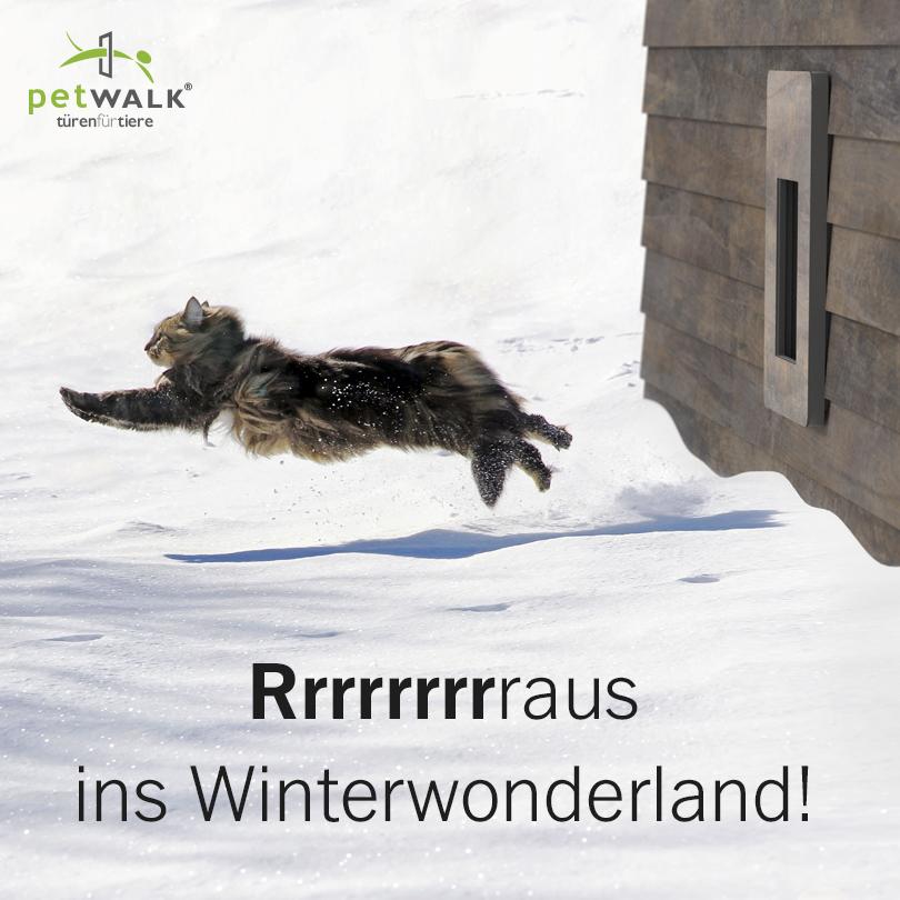 Rrrrraus ins Winterwonderland!