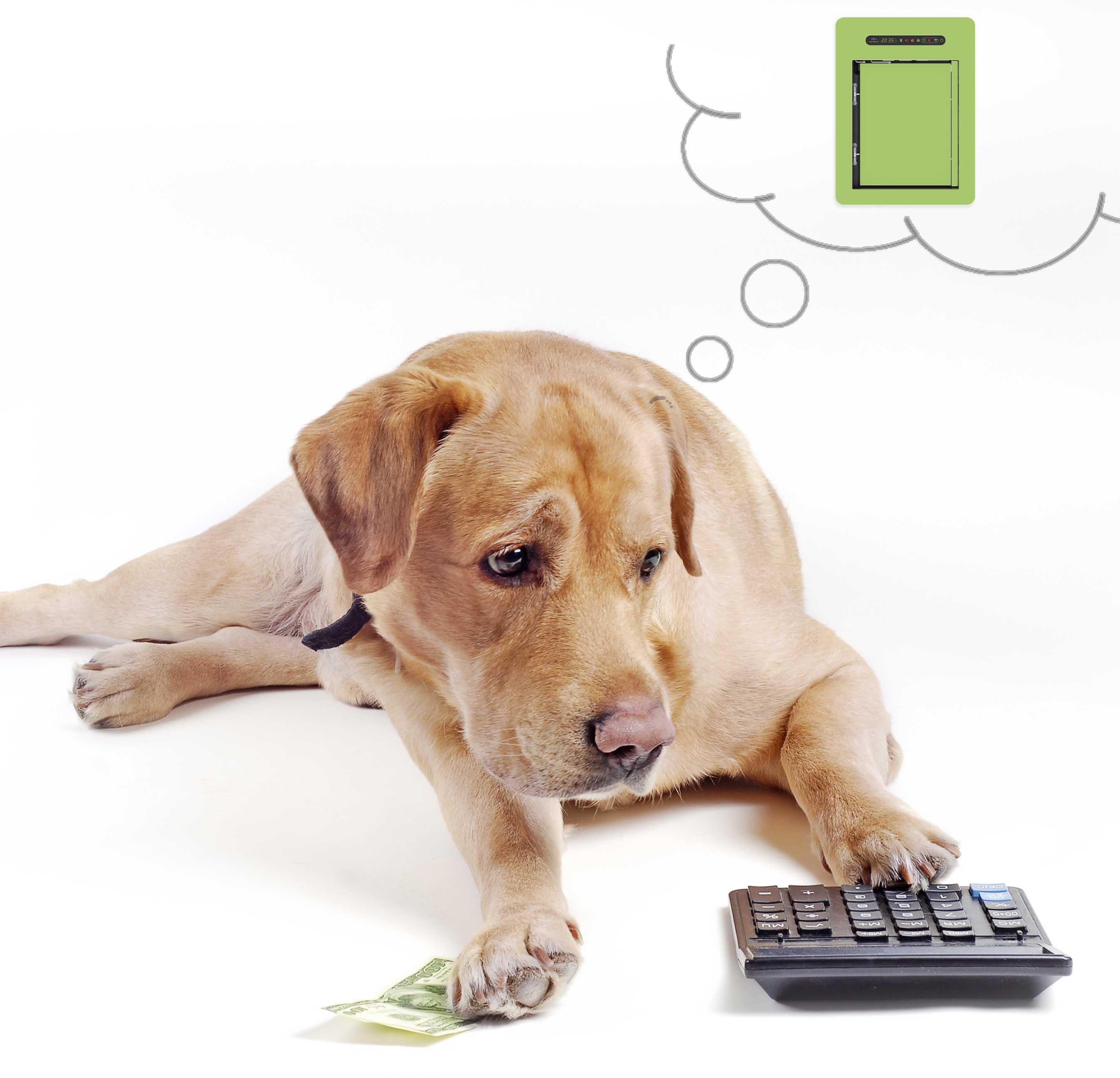 Neue Zahlungsoption: Ratenkauf!