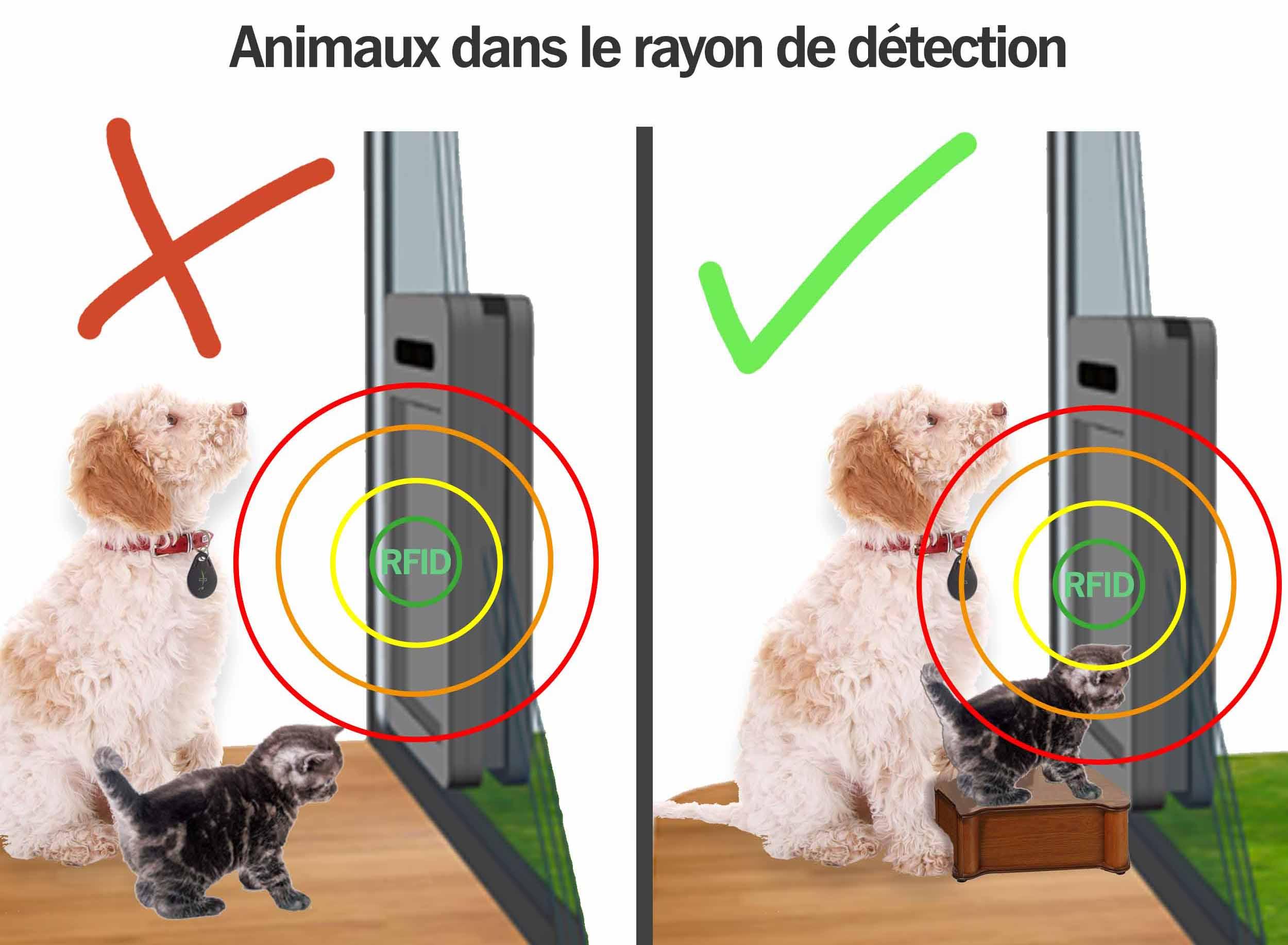Animaux dans le rayon de détection petWALK porte pour animaux chatière