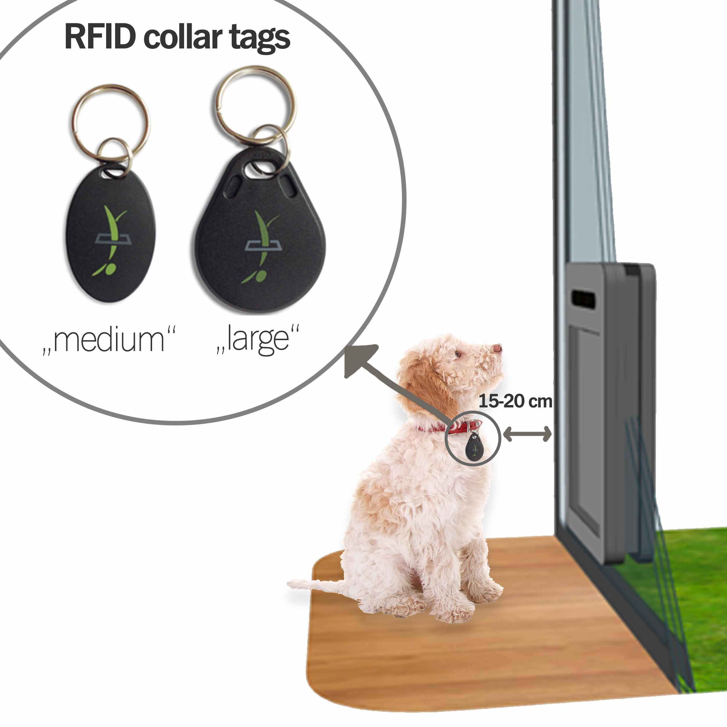 RFID chips – function and differences between collar tags and implanted microchips