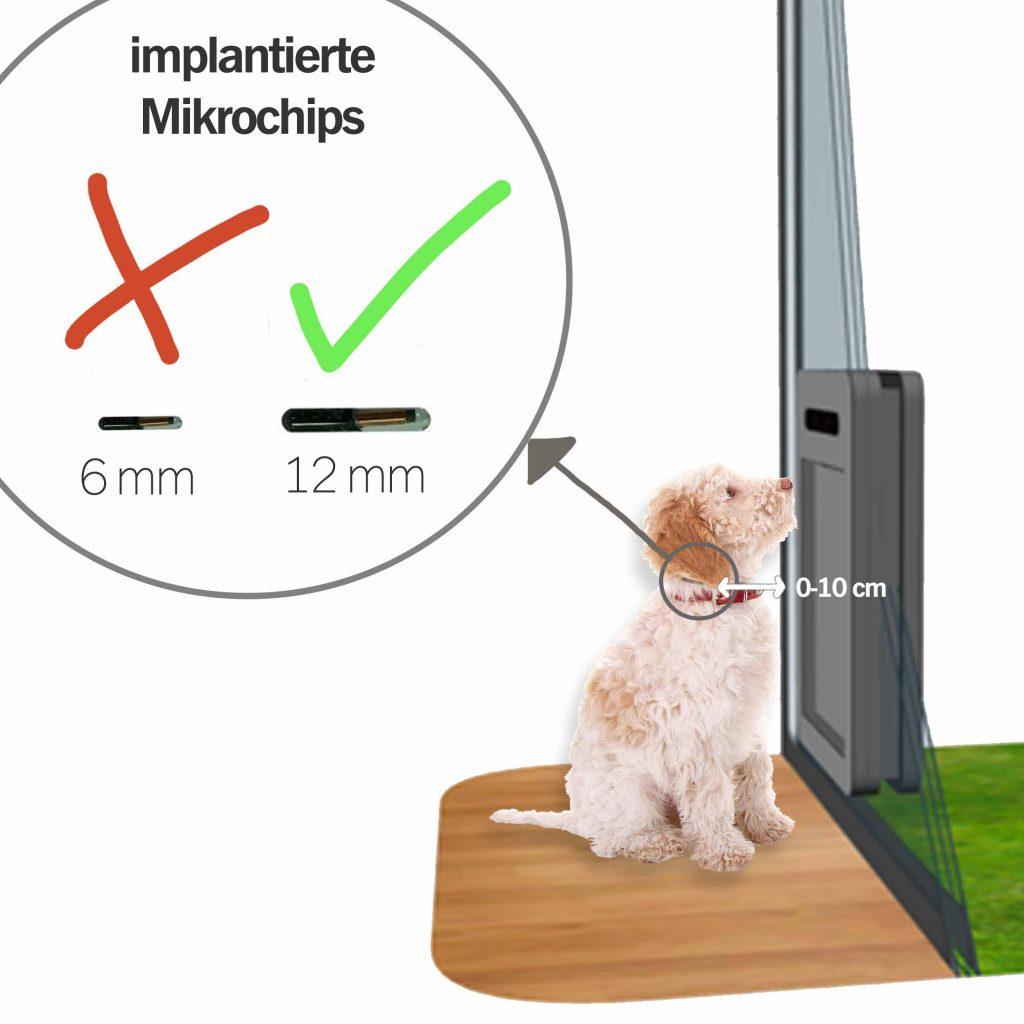 petWALK Funktion mit RFID Chip implantiert