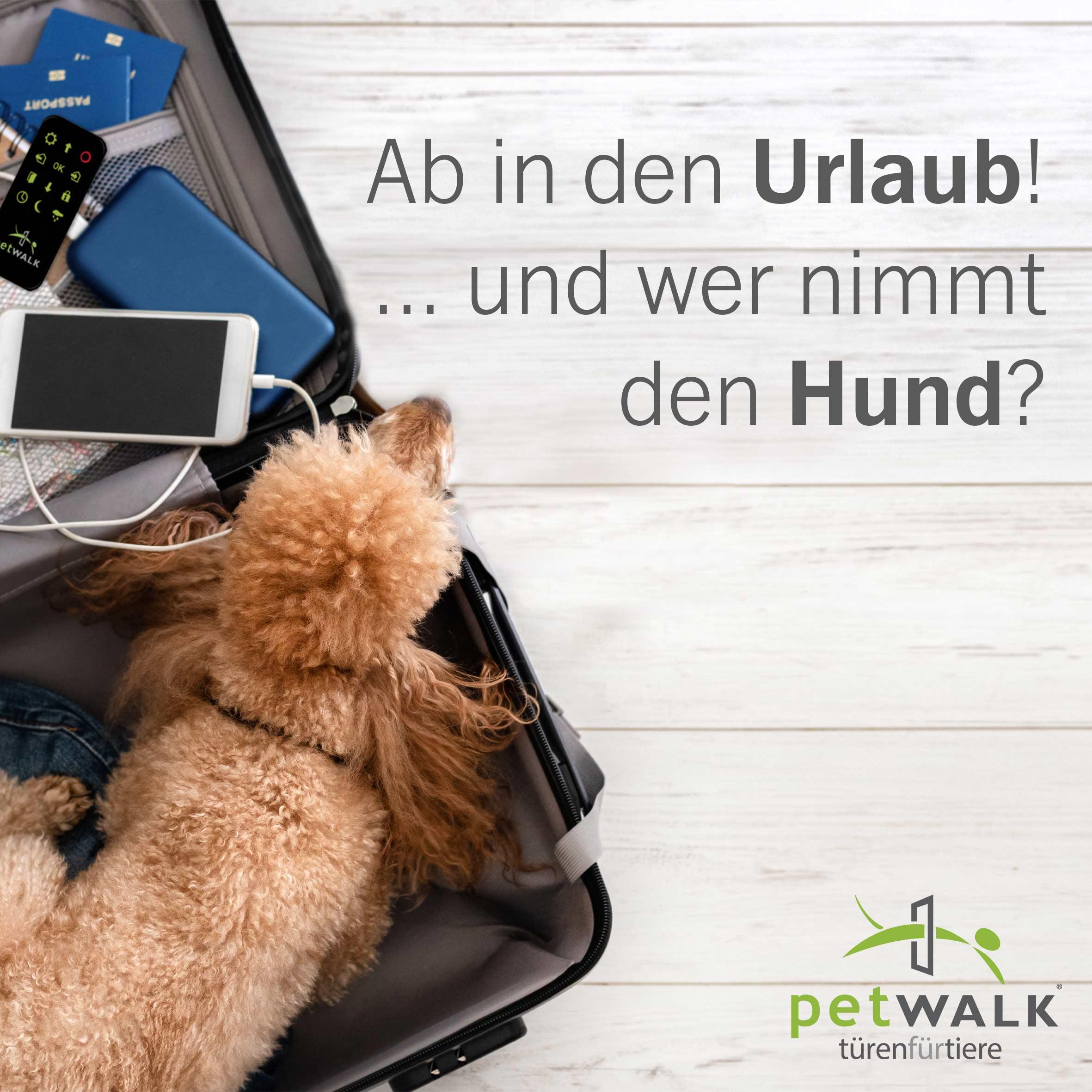 Ab in den Urlaub! ...und wer nimmt den Hund?